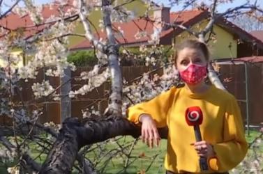 Drahu Dobrovicsová magyarul kívánt áldott húsvétot a Joj TV-n